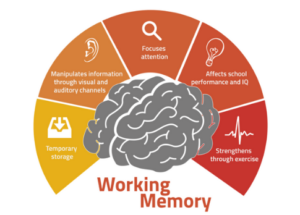 cognitive load - working memory